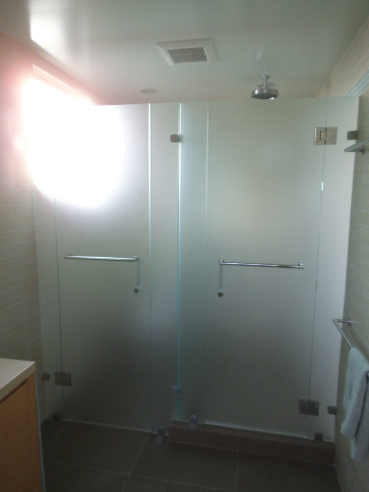 Shower, Stair Well, Satin Etch Shower and Toilet Enclosure Installation