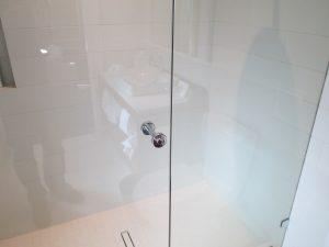 Hotel Shower Door Frameless (7)